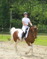 Photos of dressage